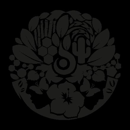 Afbeelding voor categorie L'ANZA